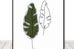 Grafika - liście bananowca, rysunek jedna linia