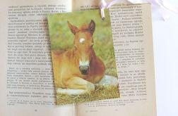 Zakładka do książki-konie