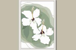 Grafika autorska, Biały Hibiscus, subtelna grafika, neutralne kolory