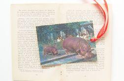 Zakładka do książki-Hipopotamy i małpa