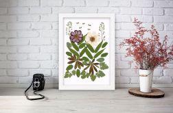Obrazek A4 Prawdziwe suszone kwiaty 006