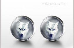 Biały wilk - kolczyki wkrętki