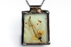 Herbario na bieli - kwiat kasztanowca