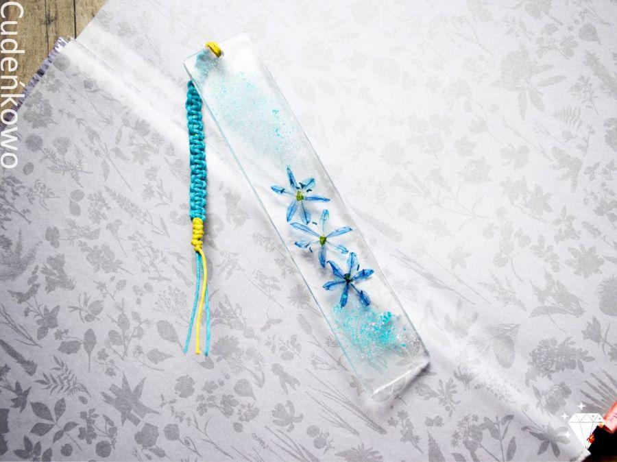 Zatopek błękitny kwiat cebulicy - 3