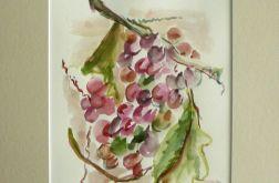 Akwarela Winogrona 30 x 40