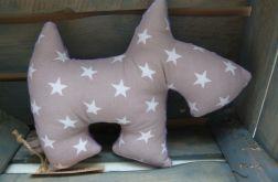 Piesek sznaucerek w gwiazdki