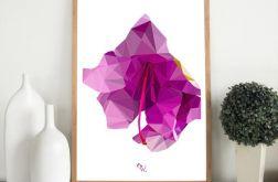 """Plakat """"African Violet"""""""