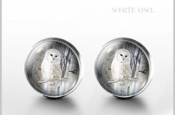 Biała sowa - kolczyki wkrętki