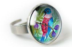 Figowy ptak pierścionek z ilustracją