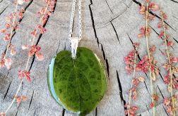 Naszynik z zielonym liściem