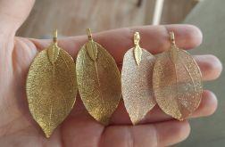 Kolczyki liście magnolii w kolorze złotym lub szampana