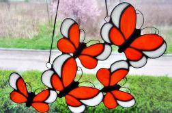 Zaczarowane motyle
