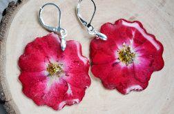 Zatopki kolczyki Róże