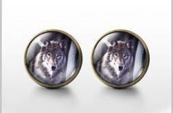 Szary wilk - antyczny brąz- kolczyki wkrętki
