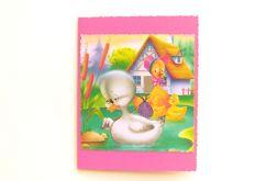 Różowa kartka - kaczuszki