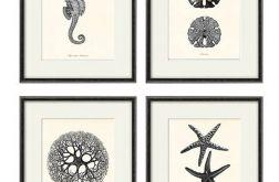 Plakat prezentgrafika koralowce konik morski