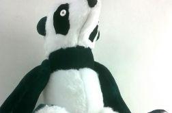 Panda Milusińska
