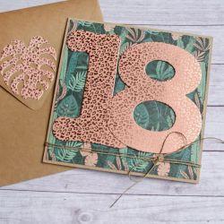 18-te urodziny : DZIKA kartka na osiemnastkę