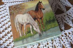 Drewniana skrzynka - konie 2