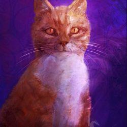 Obraz - Indygo kot - obraz z kotem - płótno