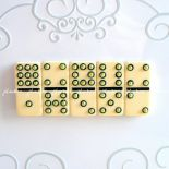 Domino magnesy #5