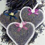 lawendowe serca organza ( woreczki lawendowe)