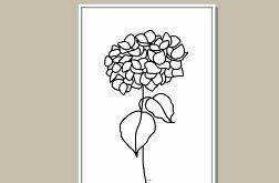 Hortensja, grafika autorska, minimalistyczna i nowoczesna