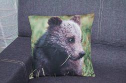 Poszewka dekoracyjna - niedźwiadek