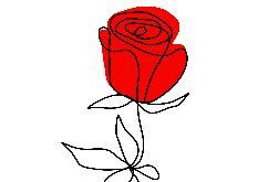 Róża czerwona grafika autorska
