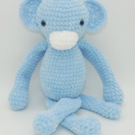 Małpka niebieska