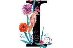 Alfabet I wydruk ilustracji