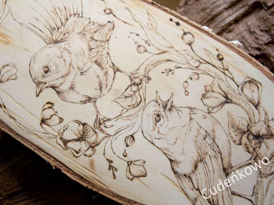 Ptaki na brzozowym drewnie