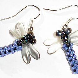 owady ważki blue