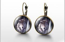 Kolczyki - Szary wilk - antyczny brąz