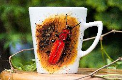 Kubek ręcznie malowany-owad, chrząszcz, robak