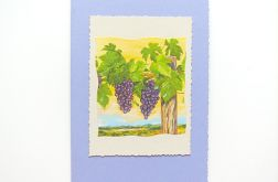 Kartka uniwersalna winogrona 1
