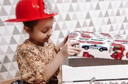 Skrzynia na zabawki z siedziskiem