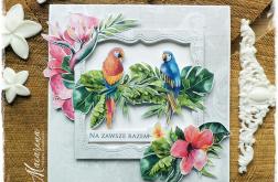 Na zawsze razem - papużki