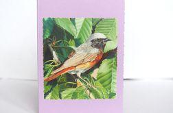 Uniwersalna kartka z ptaszkiem