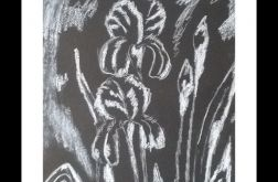 czarno-biały pastel