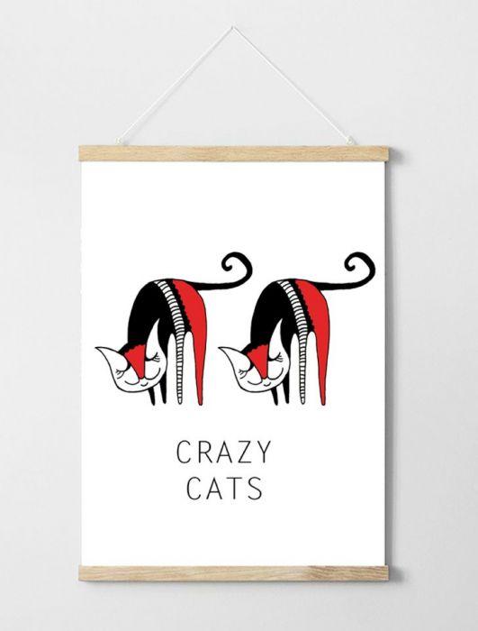 Plakat Crazy Cats A3