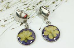 Kolczyki lilak w fiolecie