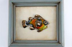 Ryba ceramiczna w ramie