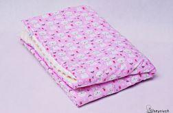 Kołderka minky kotki na różowym