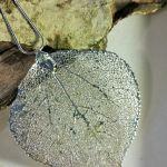 Osika w srebrze