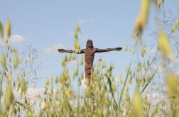 Jezus w polu Fotografia