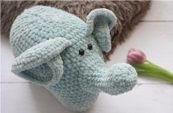 słonik Eustachy