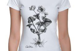 Kaczeniec - t-shirt damski - rozmiary, kolory