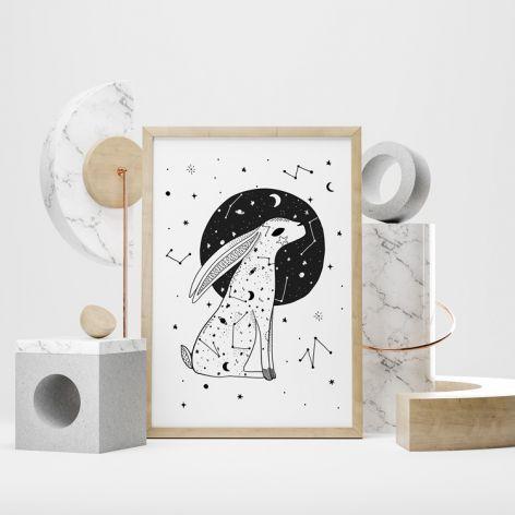 Plakat gwiezdny królik luna 50X70 B2