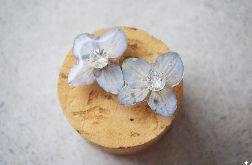 Zatopki kwiaty hortensji